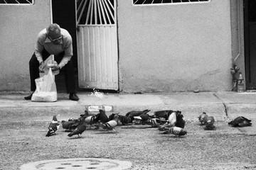 hombre alimentando gorriones