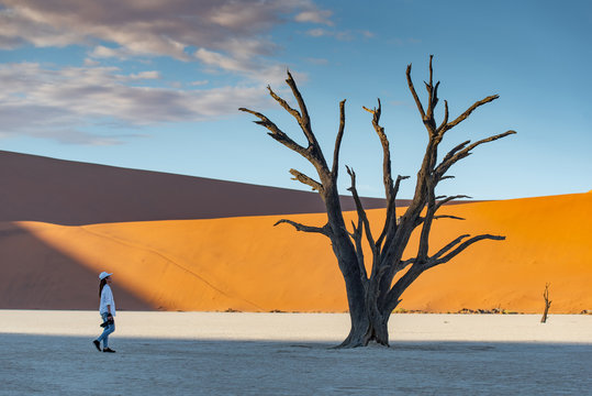 Young Asian woman photographer and traveler standing with dead tree in deadvlei (Sossusvlei) during sunrise, famous natural landmark in Namib desert of Namibia, Africa