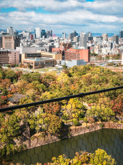 View from Osaka Castle with the Castle Park in autumn in the foreground and Osaka Skyline and mountains in the background.