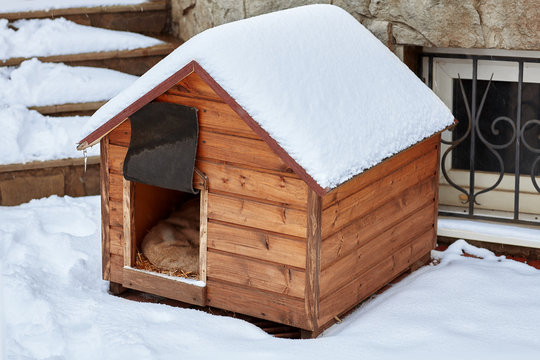 An empty wooden dog house in the winter on the back yard, covered with snow. Outdoors, copy space.