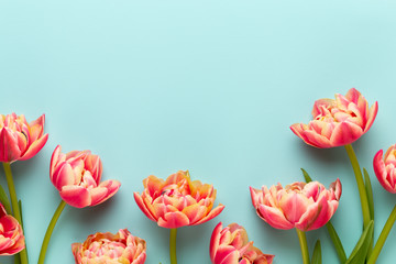 Spring flowers, tulips on pastel colors background. Retro vintage style.