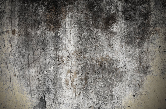 Grungy stained concrete wall with cracks and mold