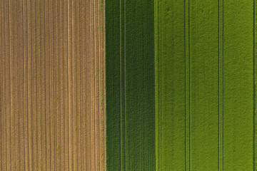 Aerial top view of a different agriculture fields in countryside on a spring day. Drone shot