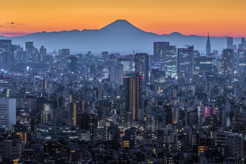 Tokyo city view and Mt.Fuji in sunset