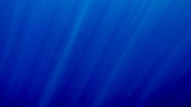 Beautiful photo of sun rays shining through deep sea surface.