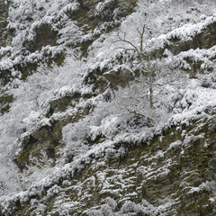 Snowy precipice in the Geopark O Courel