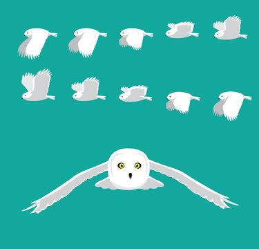 Snowy Owl Flying Animation Sequence Cartoon Vector