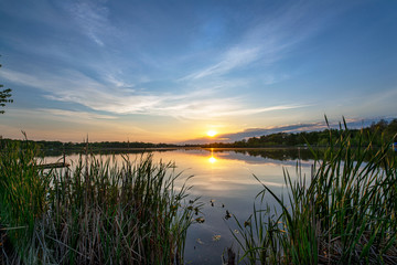 Printed roller blinds Gray traffic Sun on the Horizon over Calm Lake Waters through Cattail