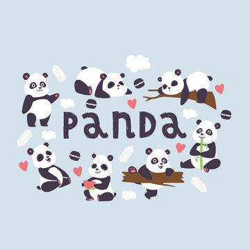 Panda vector bearcat chinese bear with bamboo in love playing or sleeping illustration backdrop of giant panda eating watermelon background wallpaper