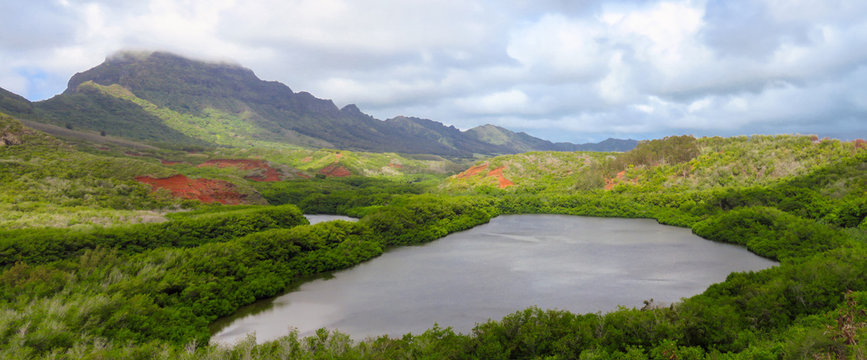 Panoramic view of Menehune fish pond aka Alekoko Fishpond on a bright summer day, mountains in the background, near Lihue, Kauai, Hawaii, USA