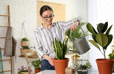 Young woman watering potted plant at home