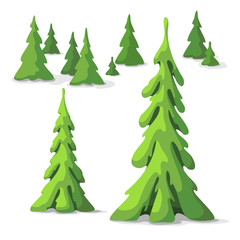 Pine tree set. Trees of different size. Graphic elements for landscape design in a cartoon style.