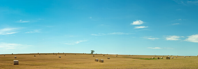 Hay It's Oklahoma