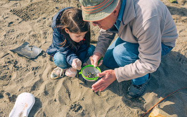 Grandfather and granddaughter volunteers picking up microplastics on the beach