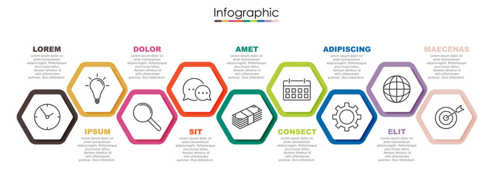 Vector infographic template with nine steps or options. Illustration presentation with line elements icons.  Business concept design can be used for web, brochure, diagram, chart or banner layout.