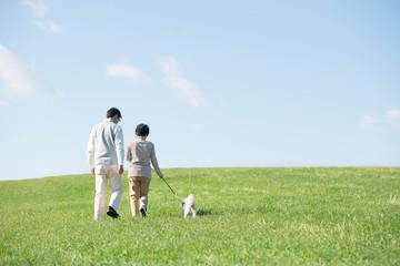 草原で犬の散歩をするシニア夫婦の後姿