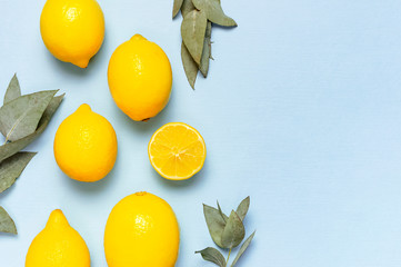 Wall Mural - Ripe juicy lemons, eucalyptus twigs on pastel blue background. Lemon fruit, citrus minimal concept, vitamin C. Creative summer food minimalistic background. Flat lay, top view, copy space.