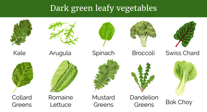 Dark green leafy vegetables, herbs. Spinach, Dandelion green, broccoli, Mustard, Romaine Lettuce, kale, Collard.