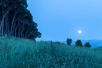 This capture of the landscape was taken under the moon light and you can see the cold tone color of blue that make a beautiful mood to the picture