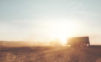 Wall Mural - Traktor mit Anhänger bei der Ernte auf einem Weizenfeld