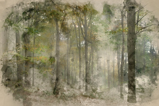 Watercolor painting of Stunning colorful vibrant evocative Autumn Fall foggy forest landscape