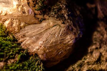 Der Bergkristall in der Höhle
