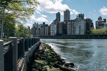 Upper East Side apartment building view from Lighthouse Park on Roosevelt Island