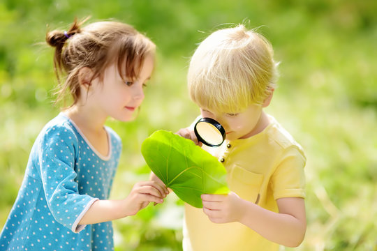 Kids exploring nature with magnifying glass. Close-up. Little boy and girl looking on leaf with magnifier.