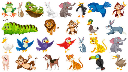 Set of cute animal