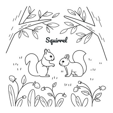 Good squirrel sitting in forest. Coloring book for kids. Cartoon vector illustration for prints, posters, t-shorts and postcards.