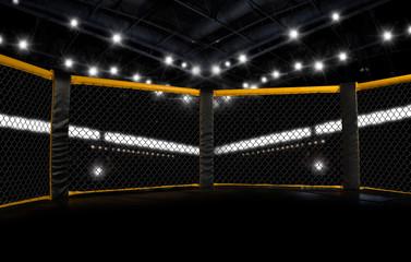 MMA fight cage arena