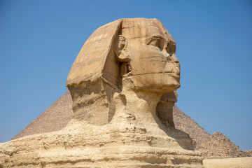 Wall Murals Egypt Great Sphinx, 3/4 view