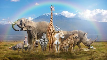 Fototapete - Magical African Wildlife Safari Scene