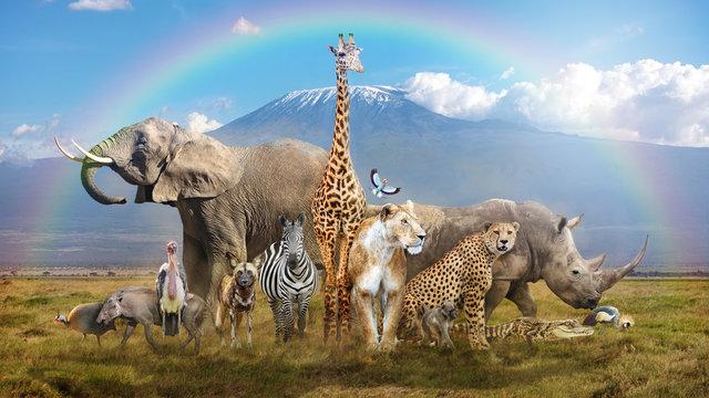 Magical African Wildlife Safari Scene