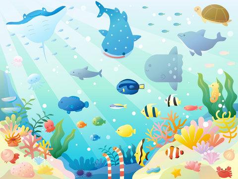 かわいい海の生き物のラスト素材