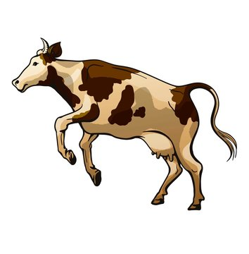 picture of a jumping cow on a white background