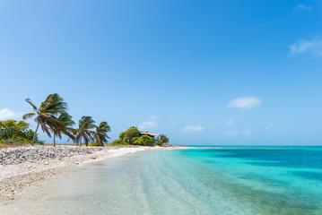 Beautiful Caribbean beach, in Los Roques Archipelago, Venezuela Wall mural