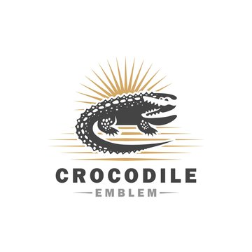 Crocodile logo. Alligator design on white background. Vector illustration