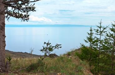 Typical landscape of the rocky shore of Lake Baikal with larche trees at summer day. Natural background
