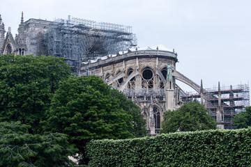 Cathedral Notre Dame de Paris France