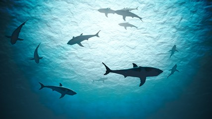 Silhouettes of sharks underwater in ocean against bright light.