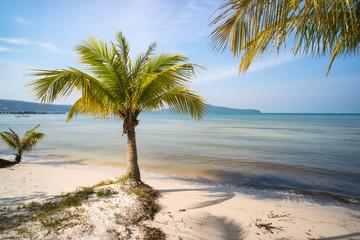 quiet empty paradise beach in koh rong island near sihanoukville Wall mural