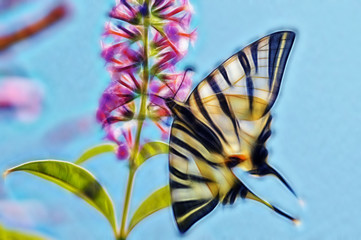 fractal picture of big beautiful butterfly