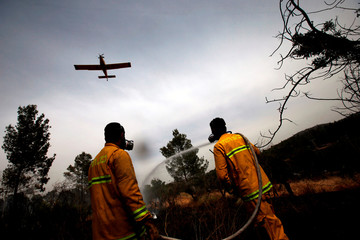 A firefighting aircraft flies over a forest as firefighters put out a fire near Kibbutz Harel, which was damaged by wildfires during a record heatwave