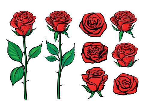 Rose flower set. Floral decoration, valentine greeting card