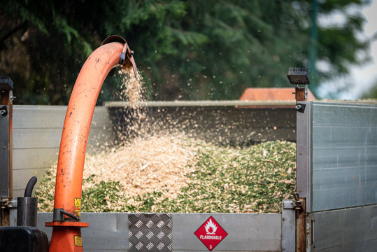 Wood chipper machine releasing the shredded tree branches into a truck