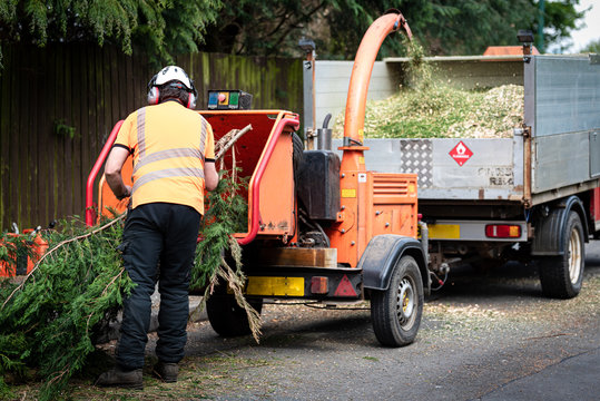 Male Arborist using a working wood chipper machine.The tree surgeon is wearing a safety helmet with a visor and ear protectors.