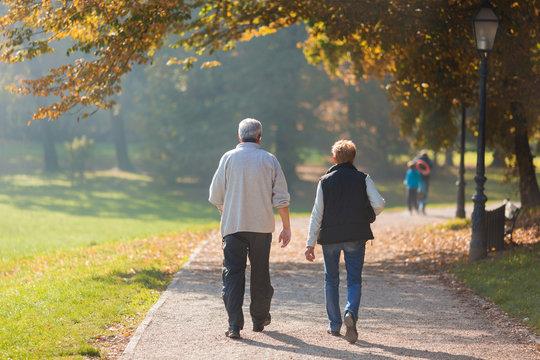 Senior citizen couple taking a walk in a park during autumn morning.