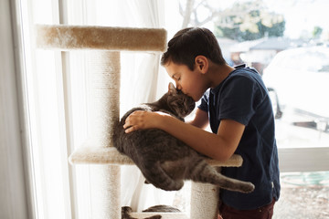Side view of boy kissing cat lying on shelf while standing at home