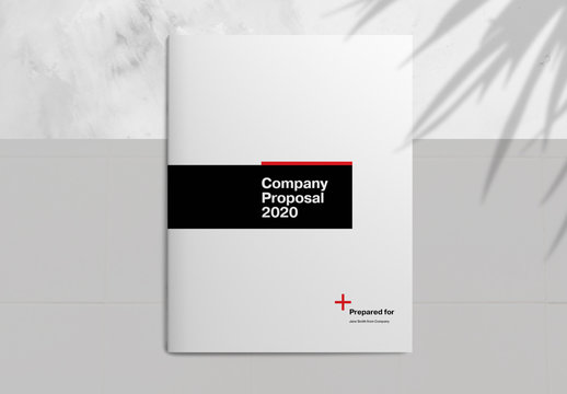 Company Proposal Brochure